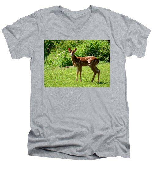 Another Reason To Love Spring Men's V-Neck T-Shirt