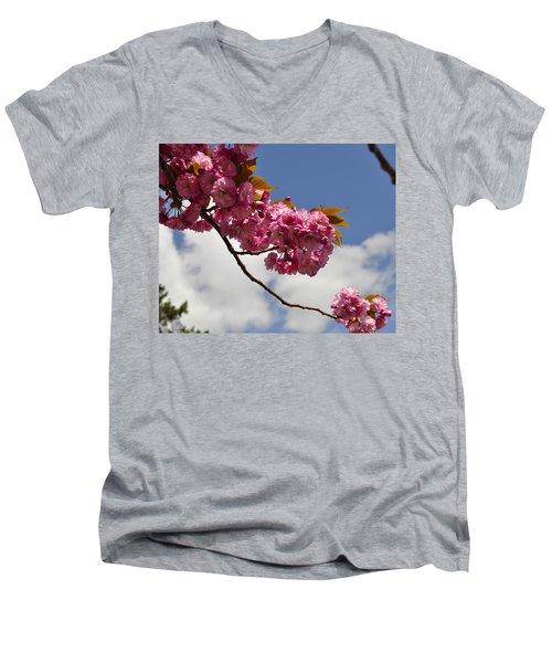 Apple Beauty Men's V-Neck T-Shirt