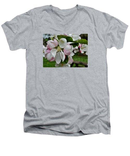 Apple Blossoms 2 Men's V-Neck T-Shirt