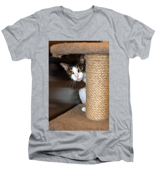 Ari Men's V-Neck T-Shirt