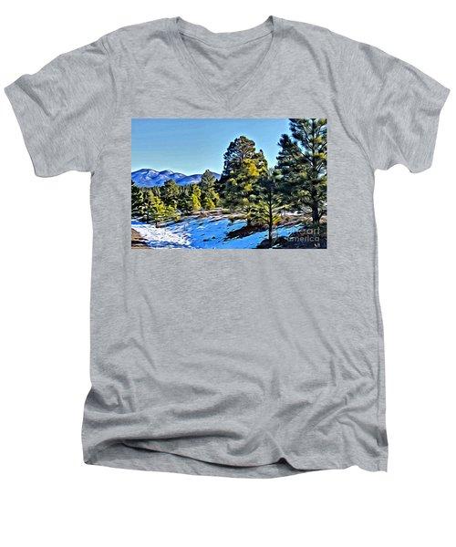 Arizona Winter Men's V-Neck T-Shirt