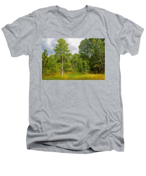 Men's V-Neck T-Shirt featuring the photograph Aspen And Others by Jim Thompson