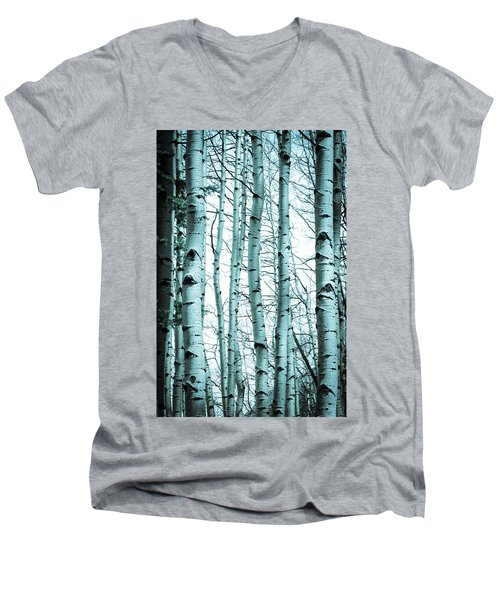 Aspen Blues Men's V-Neck T-Shirt by Debbie Karnes