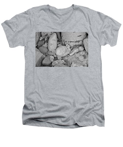Aspen Leaves On The Rocks - Black And White Men's V-Neck T-Shirt