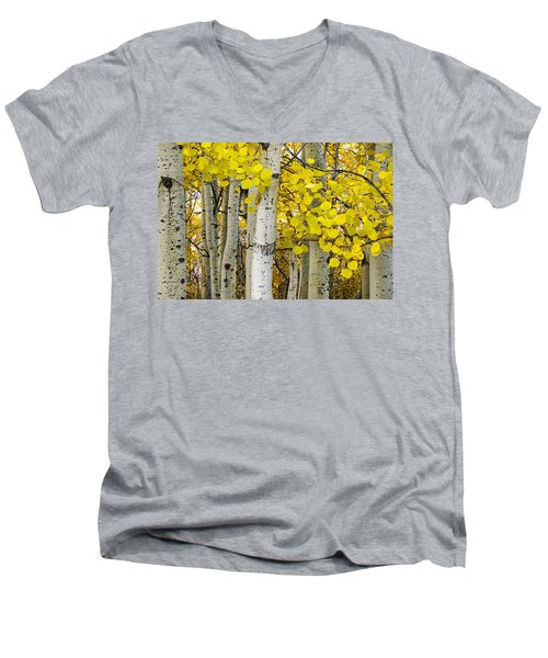 Aspens At Autumn Men's V-Neck T-Shirt by Andrew Soundarajan