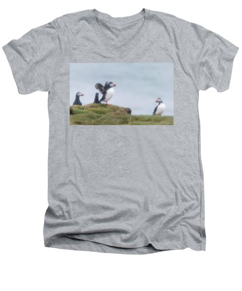 Atlantic Puffins Fratercula Arctica Men's V-Neck T-Shirt by Panoramic Images