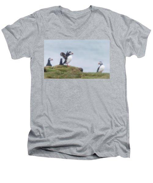 Atlantic Puffins Fratercula Arctica Men's V-Neck T-Shirt