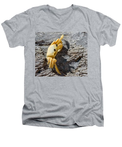 Attitude Men's V-Neck T-Shirt