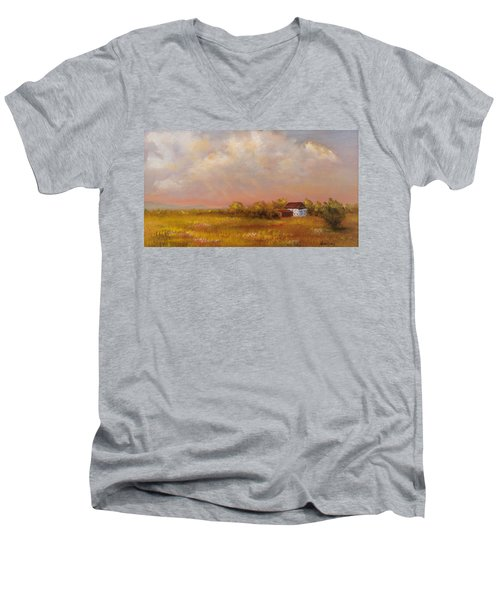 August Afternoon Pa Men's V-Neck T-Shirt