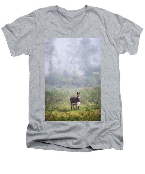 August Morning - Donkey In The Field. Men's V-Neck T-Shirt by Gary Heller