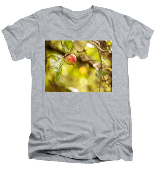 Autumn Apple Men's V-Neck T-Shirt