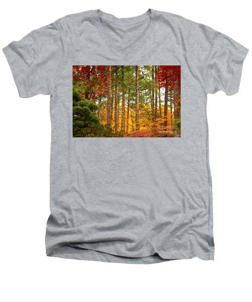 Autumn Canvas Men's V-Neck T-Shirt