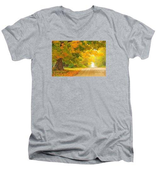 Autumn Cascade Men's V-Neck T-Shirt by Terri Gostola