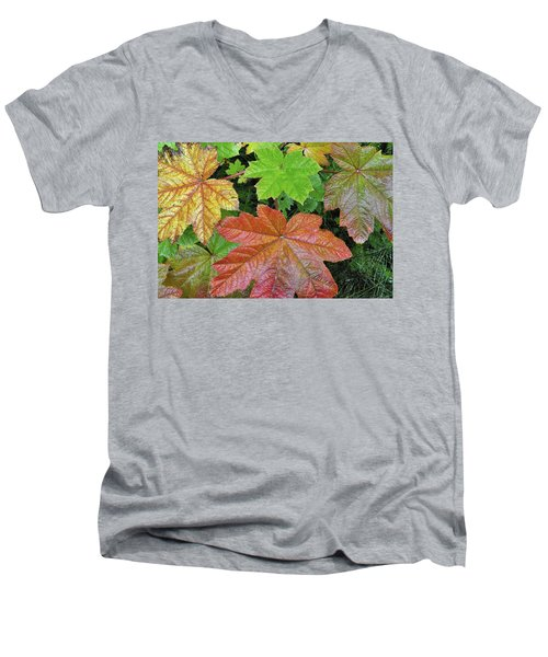 Autumn Devil's Club Men's V-Neck T-Shirt by Cathy Mahnke