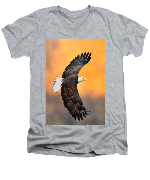 Autumn Eagle Men's V-Neck T-Shirt