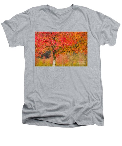 Autumn Fire Men's V-Neck T-Shirt by Sonya Lang