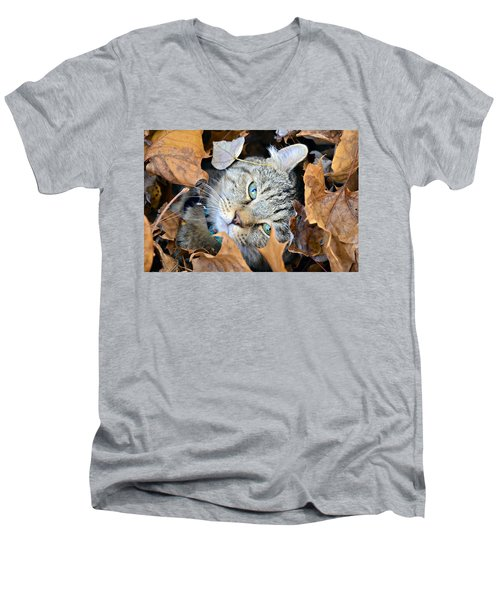 Autumn Fun Men's V-Neck T-Shirt