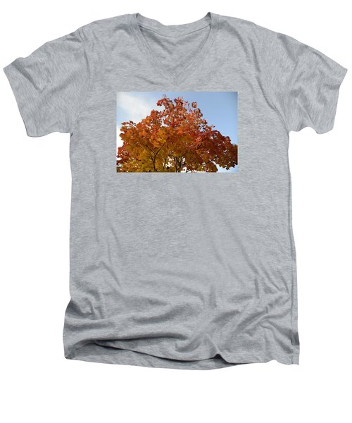 Autumn Harmony 1 Men's V-Neck T-Shirt