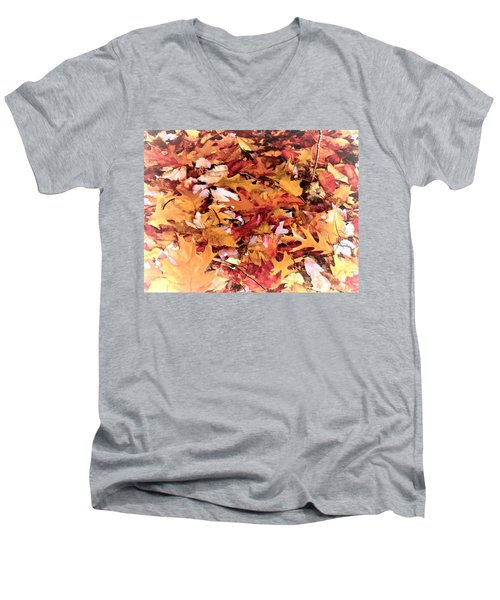 Autumn Leaves On The Ground In New Hampshire In Muted Colors Men's V-Neck T-Shirt