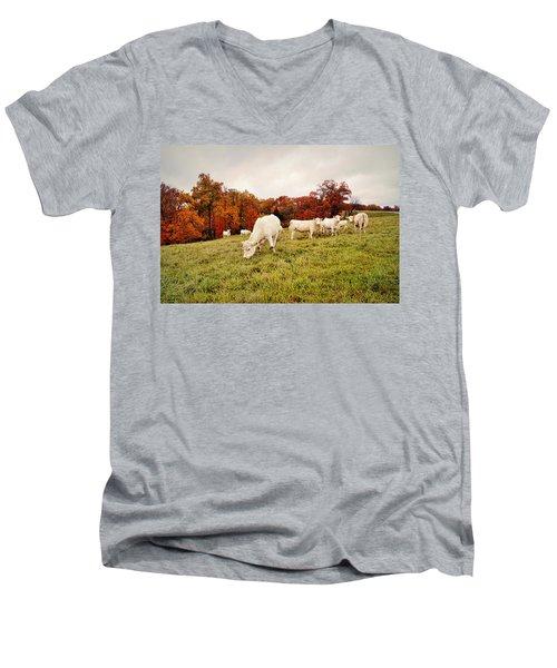 Autumn Pastures Men's V-Neck T-Shirt