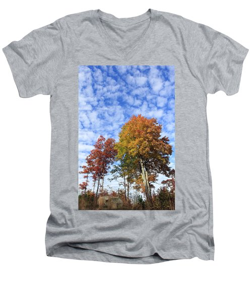 Autumn Perfection Men's V-Neck T-Shirt