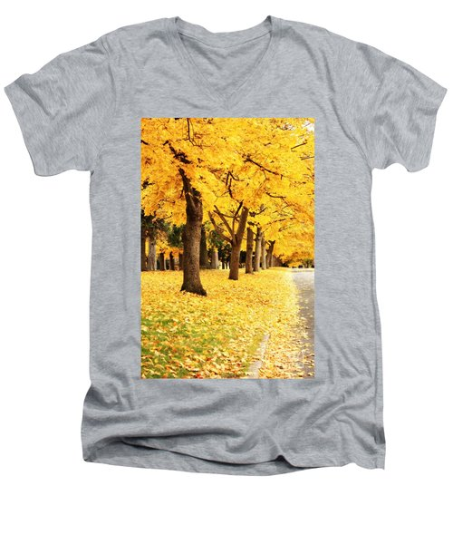 Autumn Perspective Men's V-Neck T-Shirt