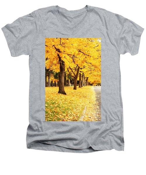 Autumn Perspective Men's V-Neck T-Shirt
