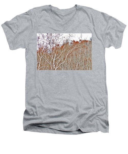 Autumn Sycamores Men's V-Neck T-Shirt by Bruce Patrick Smith
