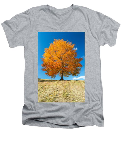 Autumn Tree - 1 Men's V-Neck T-Shirt