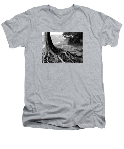 B And W Cedar Roots At Cave Point Men's V-Neck T-Shirt by David T Wilkinson