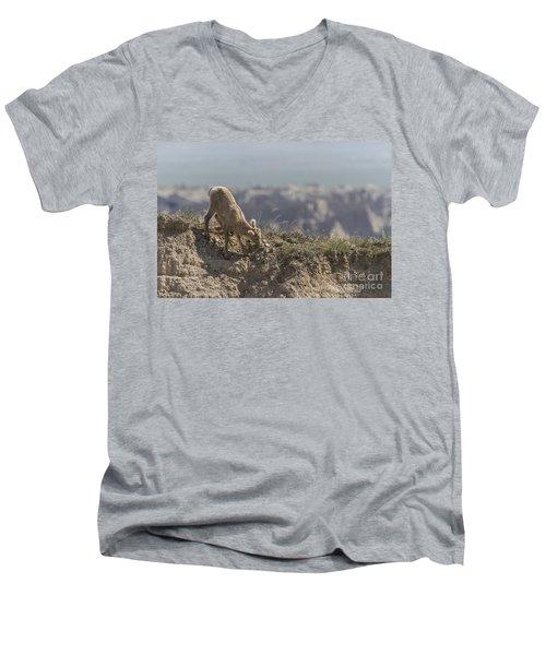 Baby Bighorn In The Badlands Men's V-Neck T-Shirt