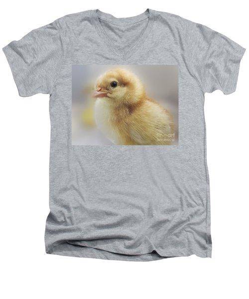 Baby Chicken Men's V-Neck T-Shirt