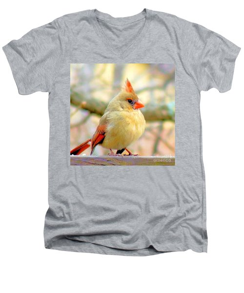 Men's V-Neck T-Shirt featuring the photograph Baby Female Cardinal by Janette Boyd