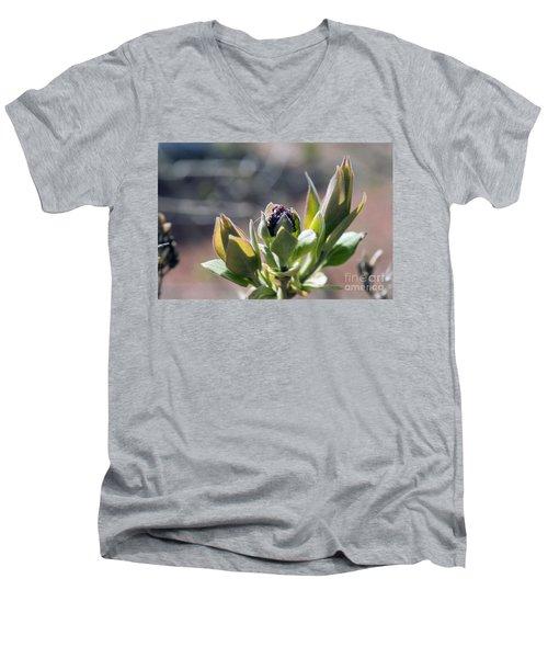 Baby Lilac Men's V-Neck T-Shirt