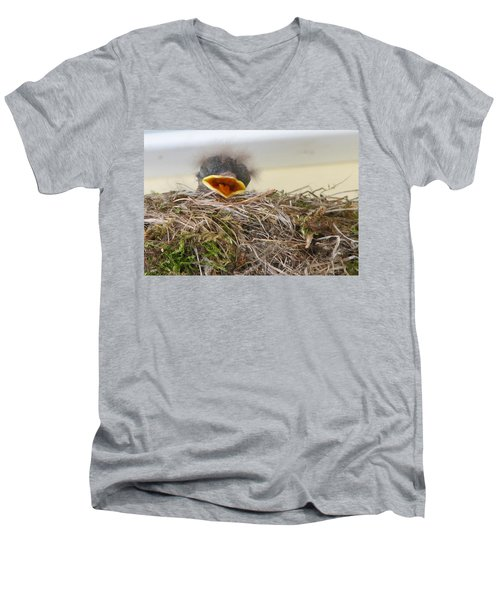 Baby Phoebe Men's V-Neck T-Shirt