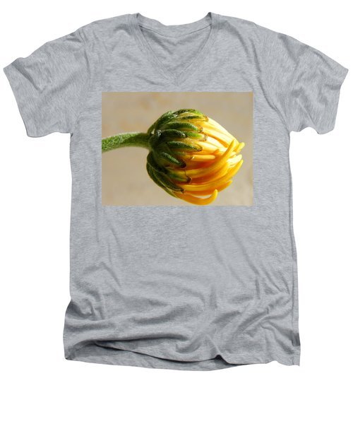 Men's V-Neck T-Shirt featuring the photograph Baby Spider Mum by Deb Halloran