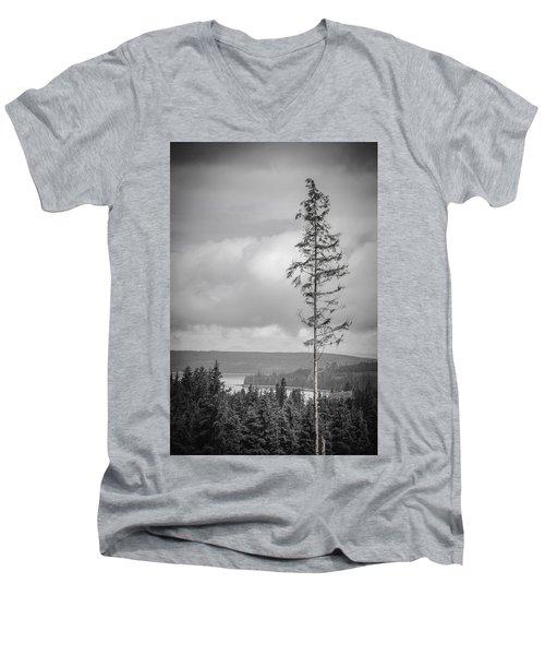 Tall Tree View Men's V-Neck T-Shirt