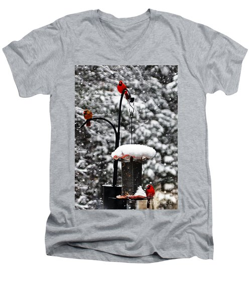 Backyard Winter Wonderland 2  Men's V-Neck T-Shirt