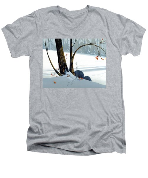Balancing Act  Men's V-Neck T-Shirt by Michael Humphries