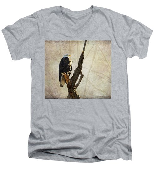 Bald Eagle Keeping Watch In Illinois Men's V-Neck T-Shirt