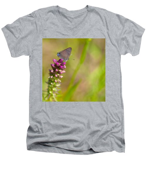 Banded Hairstreak Butterfly Men's V-Neck T-Shirt
