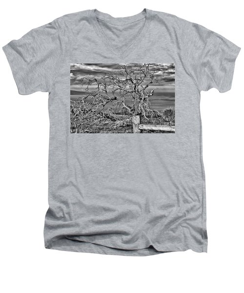 Bare Tree In Hana Men's V-Neck T-Shirt by Loriannah Hespe