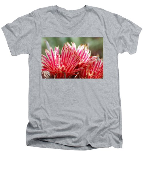 Barrel Cactus Flower Men's V-Neck T-Shirt