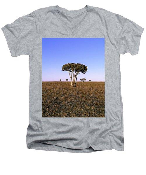 Barren Tree Men's V-Neck T-Shirt