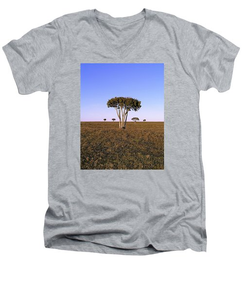 Barren Tree Men's V-Neck T-Shirt