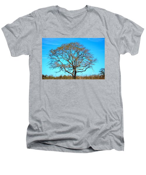 Beautiful Branching Men's V-Neck T-Shirt by Debra Martz
