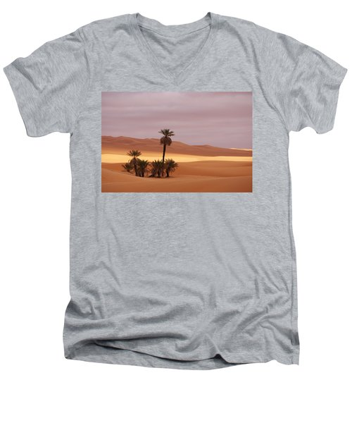 Beautiful Desert Men's V-Neck T-Shirt