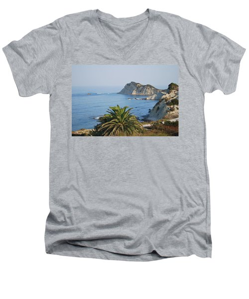 Beautiful Erikousa 1 Men's V-Neck T-Shirt