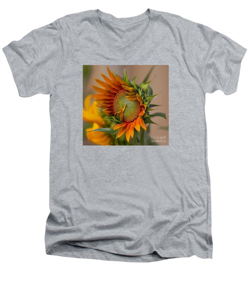 Men's V-Neck T-Shirt featuring the photograph Beautiful Sunflower by John  Kolenberg
