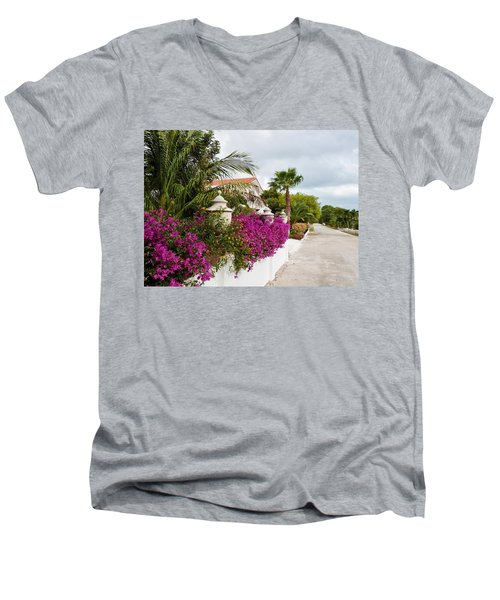 Beautiful Walk Men's V-Neck T-Shirt